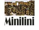 Minilini